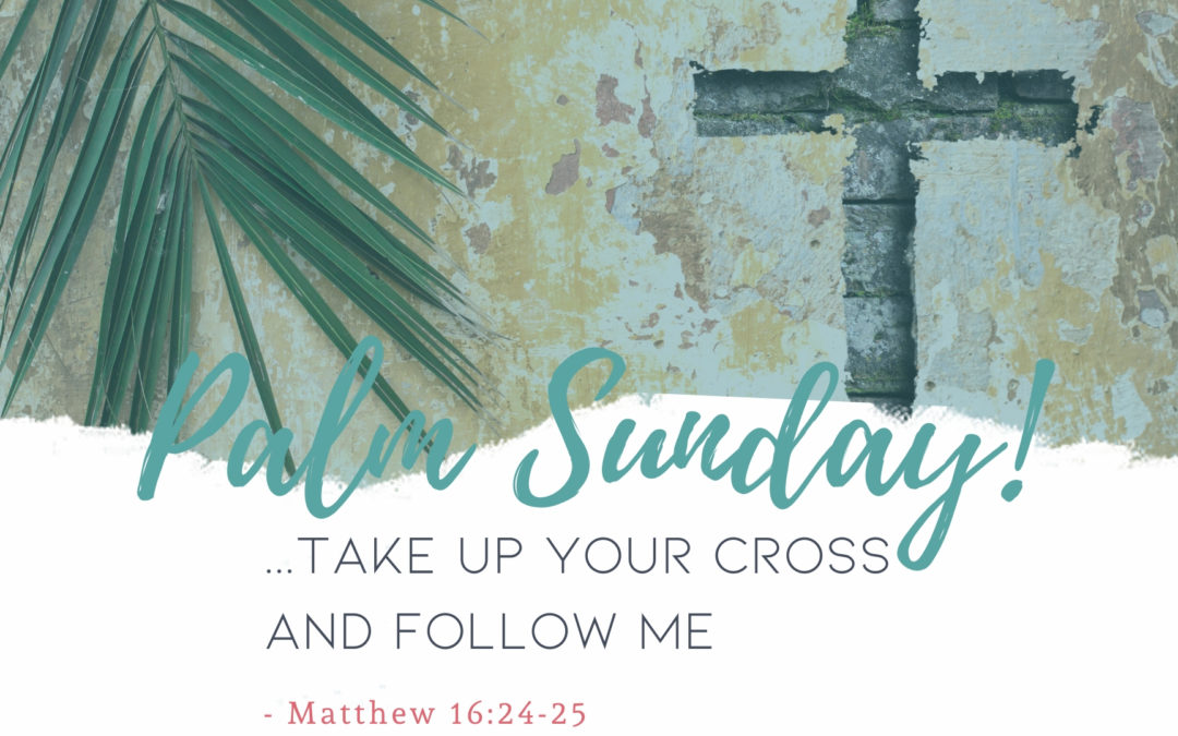 Father Nathan Homily | Palm sunday | March 28, 2021