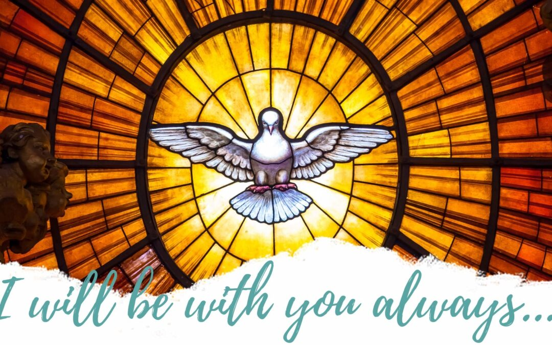 Father Nathan Homily | May 24, 2020