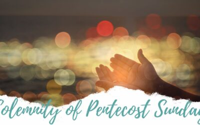 Father Nathan St Gabriel | May 31, 2020 | Pentecost Sunday