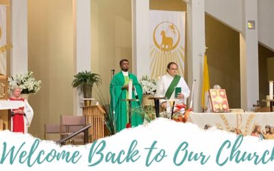 Mass Will Be Celebrated in the Church | Beginning Monday June 15