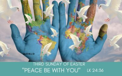 Father Nathan Homily | Third Sunday of Easter | April 18, 2021
