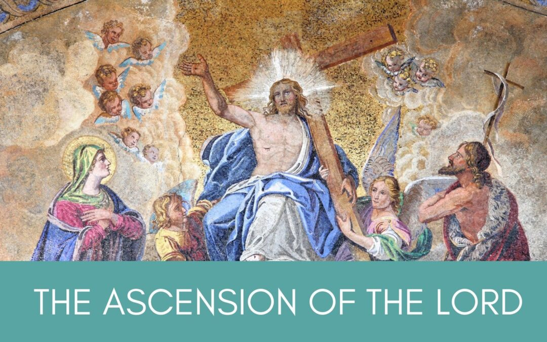 Father Nathan Homily |Seventh Sunday of Easter – Ascension | May 16, 2021